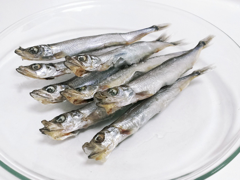 鱼的组成部分结构图